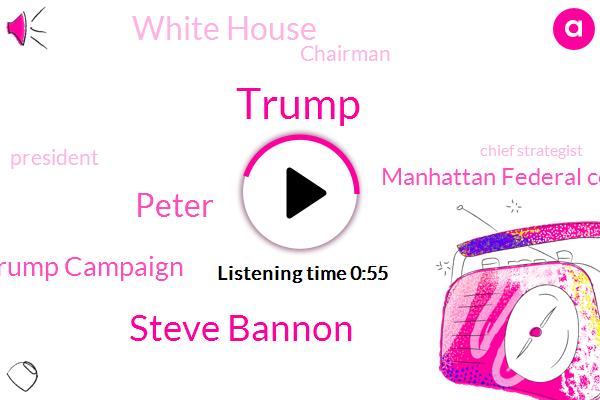 Donald Trump,Steve Bannon,Trump Campaign,President Trump,Manhattan Federal Court,Chief Strategist,Wire Fraud,Chairman,White House,Peter
