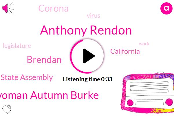 State Assembly,Anthony Rendon,Assemblywoman Autumn Burke,Brendan,California