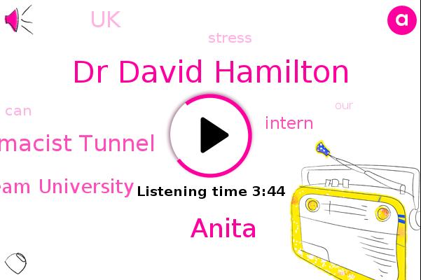 Dr David Hamilton,Pharmacist Tunnel,Intern,Part Team University,UK,Anita
