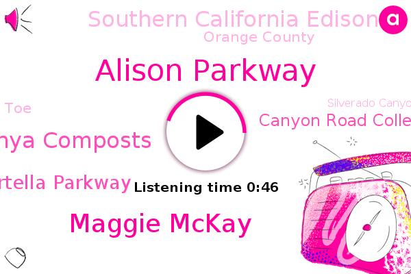 Portella Parkway,Alison Parkway,Orange County,Silverado Canyon,Maggie Mckay,Canyon Road College,Tanya Composts,Southern California Edison,TOE