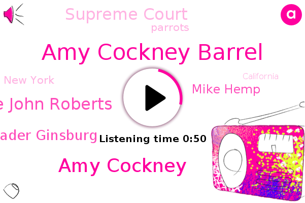 Amy Cockney Barrel,Amy Cockney,New York,Chief Justice John Roberts,Supreme Court,Justice Ruth Bader Ginsburg,Parrots,California,Mike Hemp,Nevada
