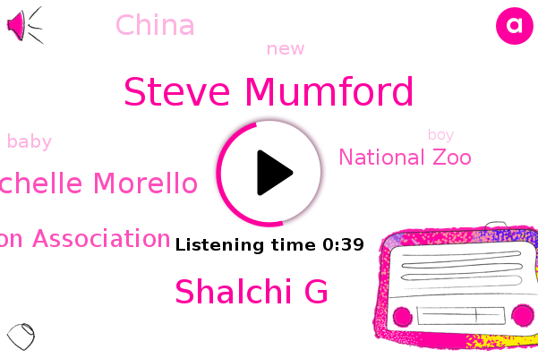 Steve Mumford,Shalchi G,China Wildlife Conservation Association,National Zoo,Michelle Morello,China