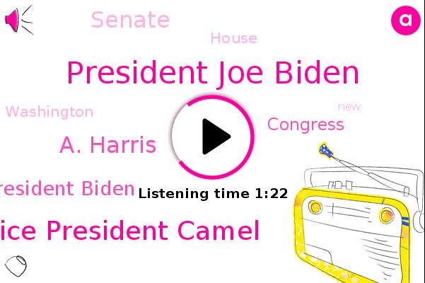 President Joe Biden,Vice President Camel,A. Harris,Congress,Washington,Senate,House,President Biden