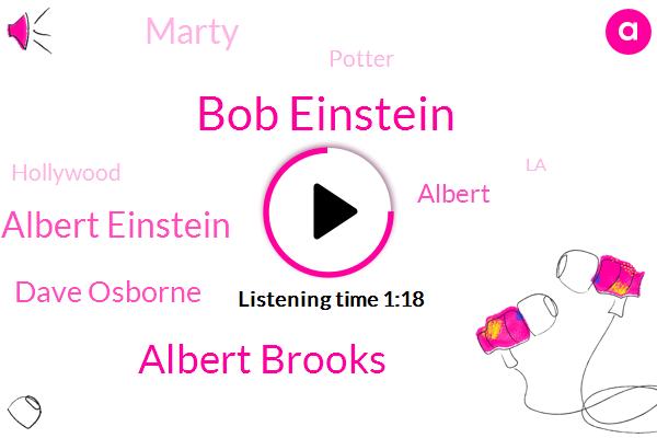 Bob Einstein,Albert Brooks,Albert Einstein,Dave Osborne,Albert,Hollywood,LA,Marty,Basketball,Potter