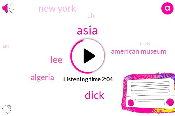 Asia,Dick,LEE,Algeria,American Museum,New York