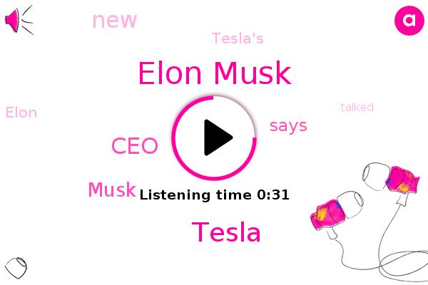 Elon Musk,Tesla,CEO