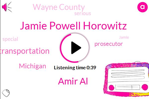 Jamie Powell Horowitz,Michigan Department Of Transportation,Amir Al,Prosecutor,Michigan,Wayne County
