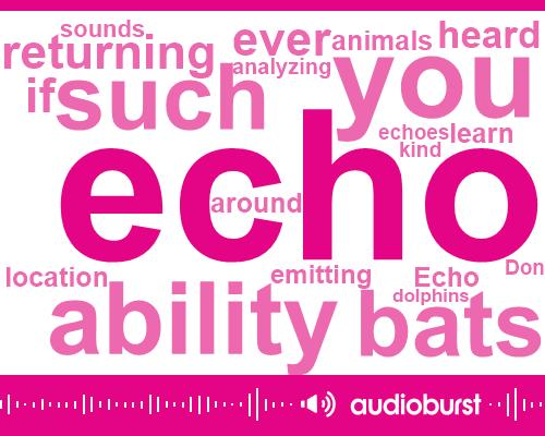 Listen: Human Echolocation