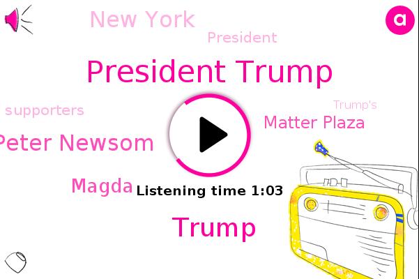 President Trump,Donald Trump,Peter Newsom,Magda,Matter Plaza,New York