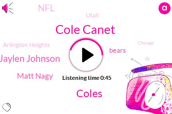 Cole Canet,Coles,Jaylen Johnson,Utah,Arlington Heights,Bears,Matt Nagy,Chicago,NFL