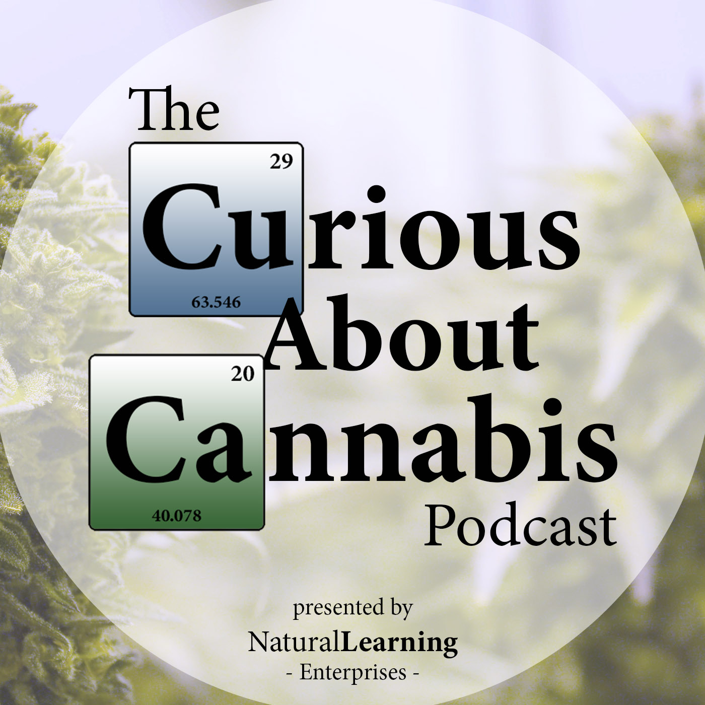 A highlight from Kevin Spelman PhD on Herbs to Compliment or Counteract Cannabis Effects   BTS #64