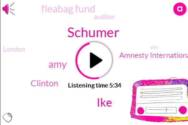 Schumer,Auditor,Amnesty International,IKE,Fleabag Fund,AMY,London,Clinton