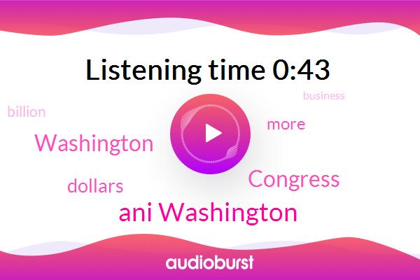 Washington,Congress,Ani Washington