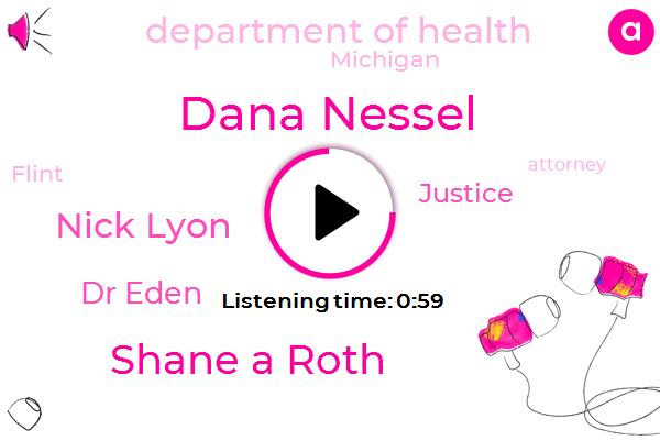 Dana Nessel,Shane A Roth,Michigan,Flint,Attorney,Involuntary Manslaughter,Nick Lyon,Dr Eden,Department Of Health,Justice,Lansing,NPR,Asia,Executive