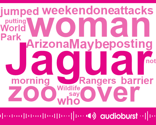 Jaguar Zoo,World Wildlife Zoo,Park Rangers,Arizona