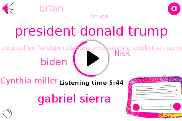 United States,President Donald Trump,Gabriel Sierra,Council On Foreign Relations And Leading Expert On Terrorism,FBI,Capitol Building,Biden,Department Of Homeland Security,Cynthia Miller,American University In The School Of Public Affairs,Austria,Nick,Brian,Bruce,Congress