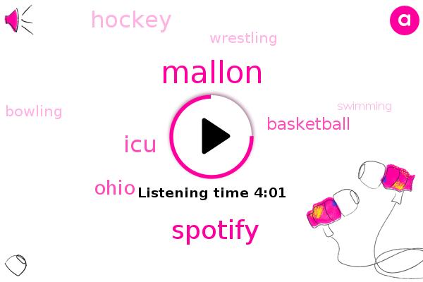 Spotify,Basketball,Mallon,Hockey,ICU,Wrestling,Bowling,Swimming,Chess,Ohio