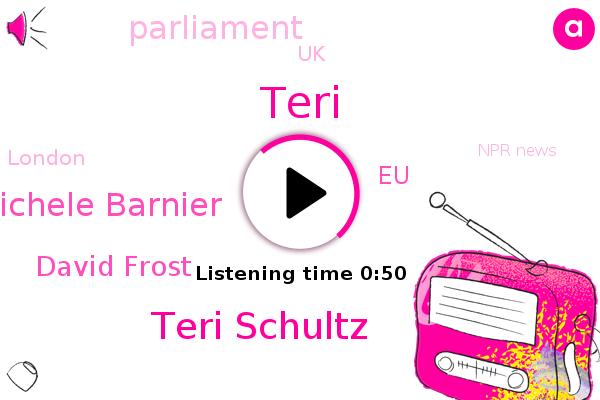 Teri Schultz,Michele Barnier,EU,David Frost,UK,London,Parliament,Npr News,Teri
