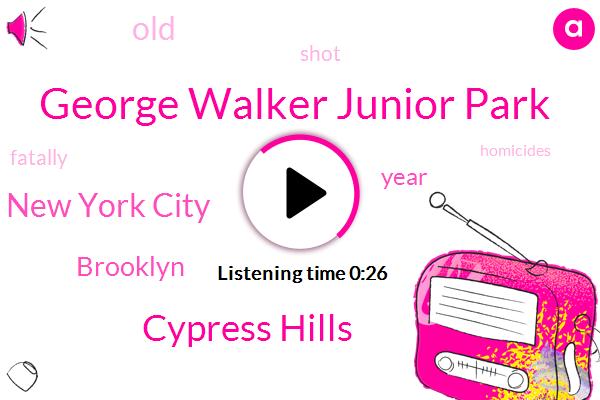 George Walker Junior Park,Cypress Hills,New York City,Brooklyn