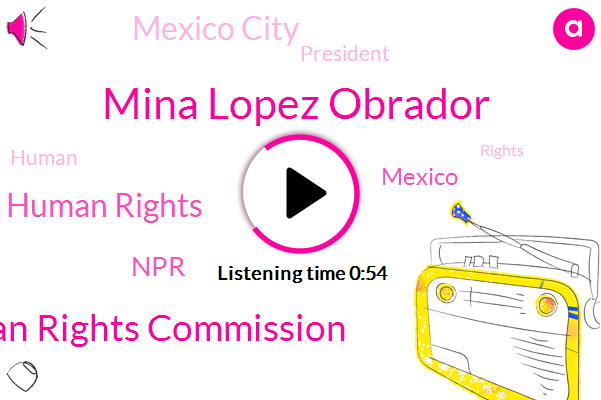 Human Rights Commission,Commission For Human Rights,Mexico,Mina Lopez Obrador,Mexico City,NPR,President Trump