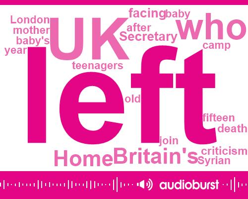 Syria,Britain,Isis,UK,Andrew Mitchell,Secretary,London,Sky News,Turkey,Official,Fifteen Year