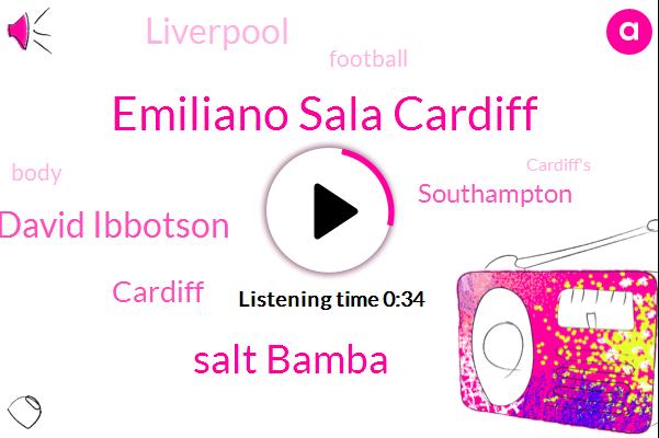 Emiliano Sala Cardiff,Cardiff,Salt Bamba,David Ibbotson,Southampton,Football,Liverpool