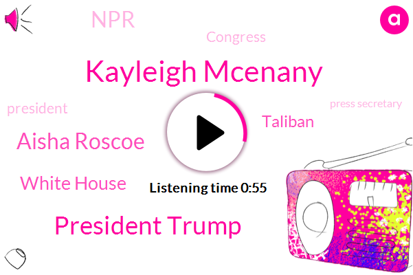 White House,Kayleigh Mcenany,President Trump,Aisha Roscoe,Taliban,NPR,Press Secretary,Congress,Russia