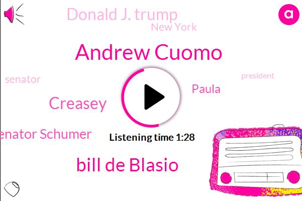 New York,Andrew Cuomo,Bill De Blasio,Senator,President Trump,Creasey,Senator Schumer,Paula,Donald J. Trump