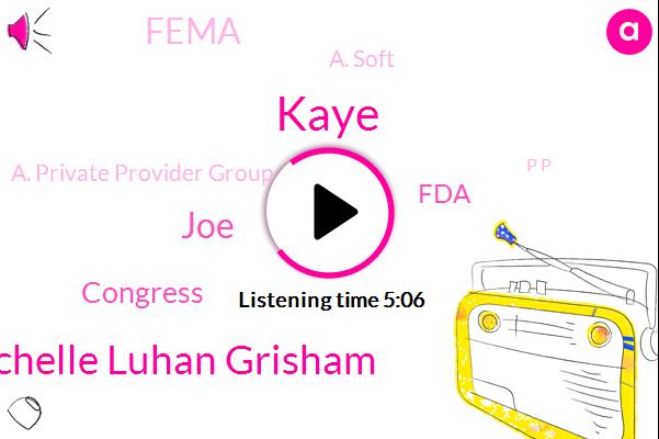 Governor Michelle Luhan Grisham,Flu Vaccine,Jonathan,Secretary,Congress,Influenza,Cape Up,JOE,California,FDA,Kaye,Canada,Fema,New Mexico,A. Soft,A. Private Provider Group,P P