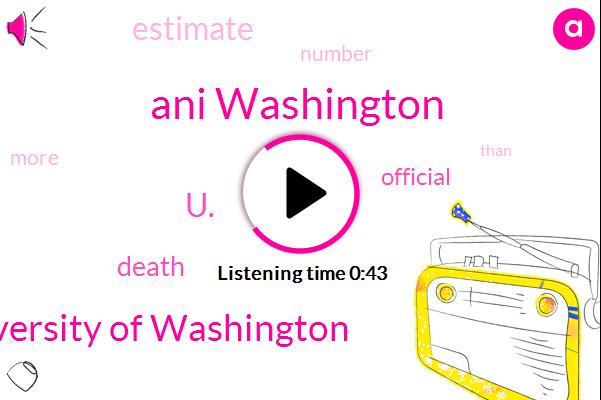 University Of Washington,U.,Ani Washington