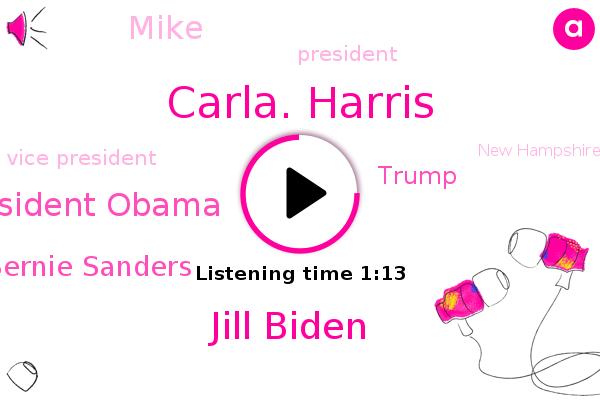 Carla. Harris,Jill Biden,President Obama,President Trump,Vice President,Bernie Sanders,Donald Trump,New Hampshire,Lake City,Arizona,Minnesota,Rockford,Mike