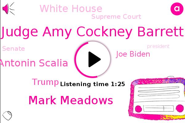 Judge Amy Cockney Barrett,Mark Meadows,White House,Justice Antonin Scalia,President Trump,Donald Trump,Supreme Court,Chief Of Staff,Joe Biden,Senate,Washington,Florida,Ohio