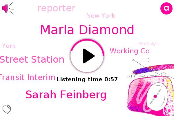 Marla Diamond,Fulton Street Station,City Transit Interim,Sarah Feinberg,Reporter,New York,York,Working Co,Brooklyn,President Trump