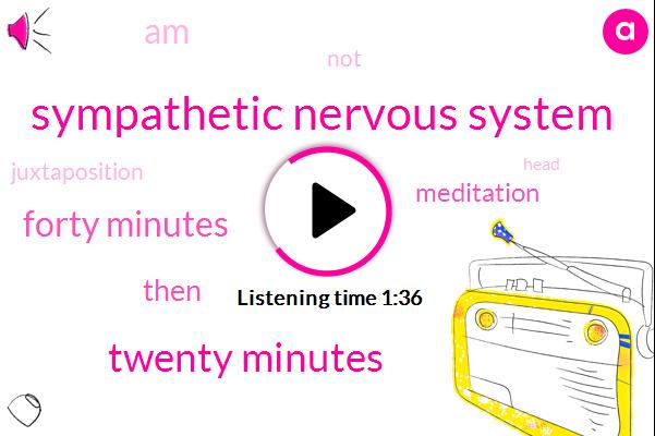Sympathetic Nervous System,Twenty Minutes,Forty Minutes
