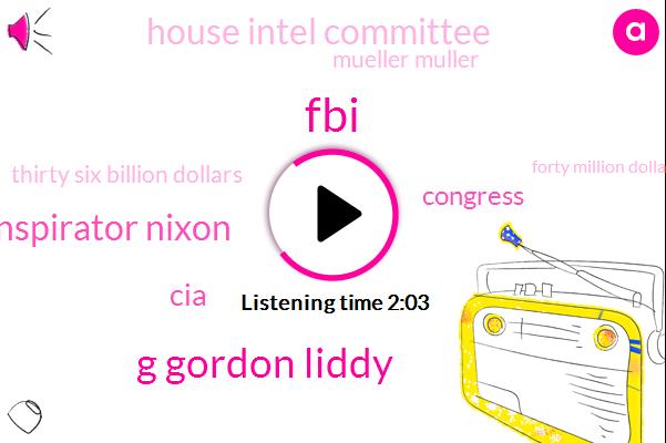FBI,G Gordon Liddy,Coconspirator Nixon,CIA,Congress,House Intel Committee,Mueller Muller,Thirty Six Billion Dollars,Forty Million Dollars,Six Months