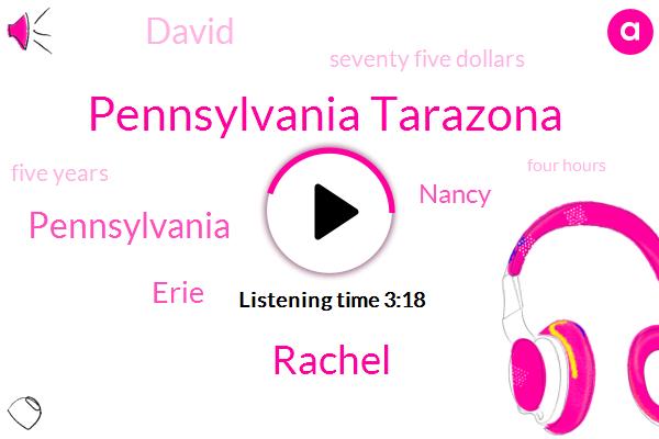 Pennsylvania Tarazona,Rachel,Pennsylvania,Erie,Nancy,David,Seventy Five Dollars,Five Years,Four Hours