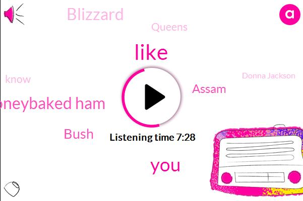 Honeybaked Ham,Bush,Assam,Blizzard,Queens,Donna Jackson