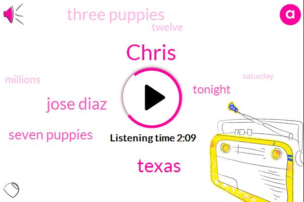 Chris,Jose Diaz,Texas,Seven Puppies,Tonight,Four,Three Puppies,Twelve,Millions,Saturday,Aubrey,Seven,Each