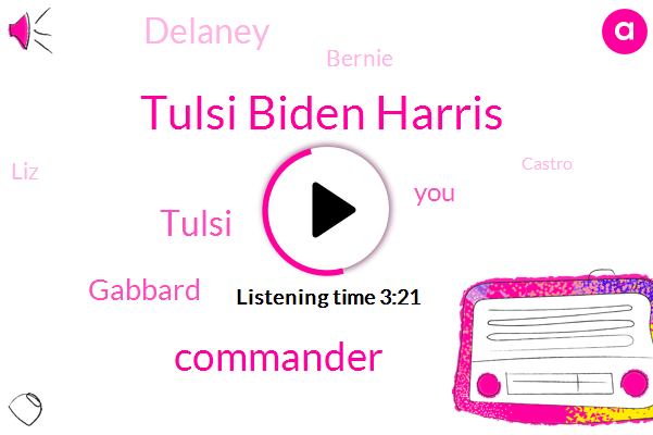 Tulsi Biden Harris,Commander,Tulsi,Gabbard,Delaney,Bernie,LIZ,Castro,Booker,Warren,Two Percent