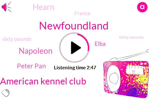 Newfoundland,American Kennel Club,Napoleon,Peter Pan,Elba,Hearn,France,Sixty Pounds,Thirty Seconds,Three Hours,Six Feet