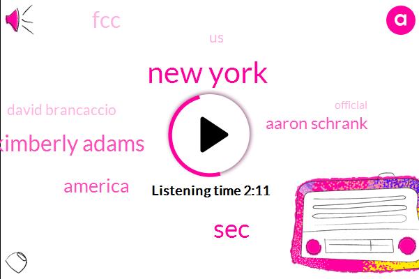 New York,SEC,Kimberly Adams,America,Aaron Schrank,FCC,United States,David Brancaccio,Official,Nine Eight Percent,Three Percent