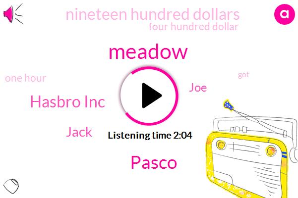 Meadow,Pasco,Hasbro Inc,Jack,JOE,Nineteen Hundred Dollars,Four Hundred Dollar,One Hour