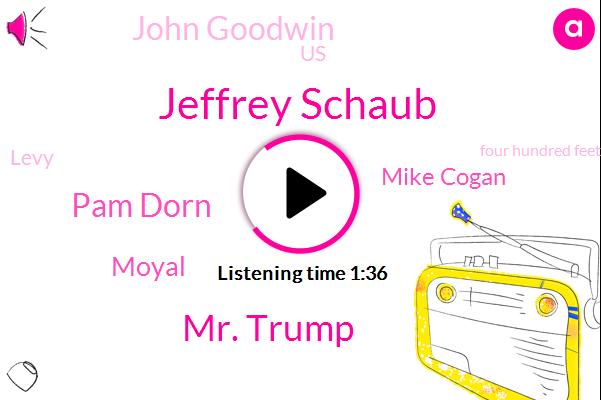 Jeffrey Schaub,Kcbs,Mr. Trump,Pam Dorn,Moyal,Mike Cogan,John Goodwin,United States,Levy,Four Hundred Feet,Billion Dollar,Hundred Foot,Two Years