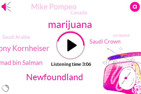 Marijuana,Newfoundland,Tony Kornheiser,Prince Mohammad Bin Salman,Saudi Crown,Mike Pompeo,Canada,Saudi Arabia,Jen Babbit,Donald Trump,Metcalf,Quiring,Mr. Jogi,Thirty Grams