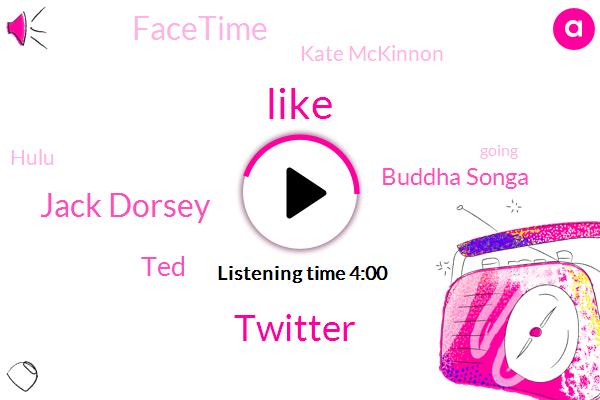 Twitter,Jack Dorsey,TED,Buddha Songa,Facetime,Kate Mckinnon,Hulu