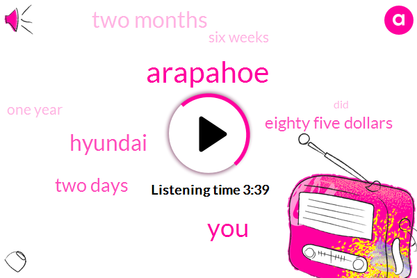 Arapahoe,Hyundai,Two Days,Eighty Five Dollars,Two Months,Six Weeks,One Year