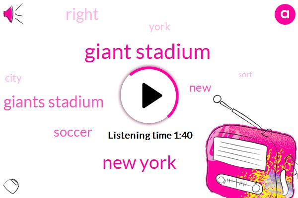 Giant Stadium,New York,Giants Stadium,Soccer