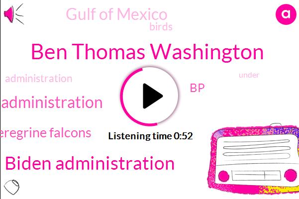 Biden Administration,Trump Administration,Peregrine Falcons,BP,Gulf Of Mexico,Ben Thomas Washington