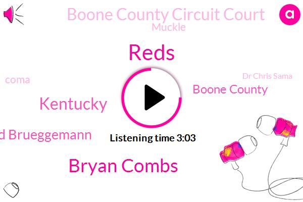 Bryan Combs,Reds,Kentucky,Judge Richard Brueggemann,Boone County,Boone County Circuit Court,Muckle,Coma,Dr Chris Sama,Traumatic,Attorney,Director