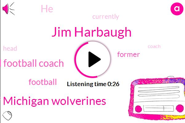 Jim Harbaugh,Head Football Coach,University Of Michigan Wolverines,Football